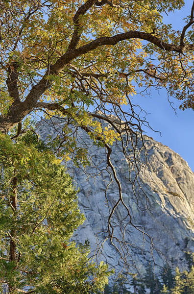 Photograph - Tahquitz Mountain In Fall by Scott Campbell