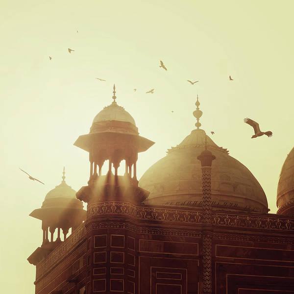 Taj Mahal Photograph - Taj Mahal by Thepalmer