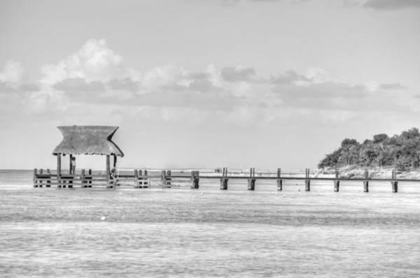 Photograph - Take A Long Walk Off A Short Pier by Bill Hamilton
