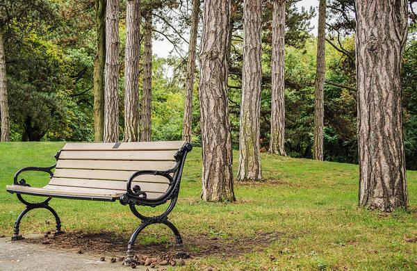 Photograph - Take A Seat by Garvin Hunter