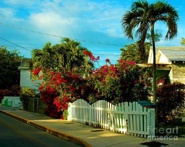 Photograph - Take A Stroll Down On Elizabeth Street In Key West Florida by Susanne Van Hulst