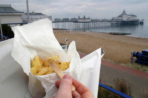 British Food Photograph - Take Away Chips by Gustoimages/science Photo Library