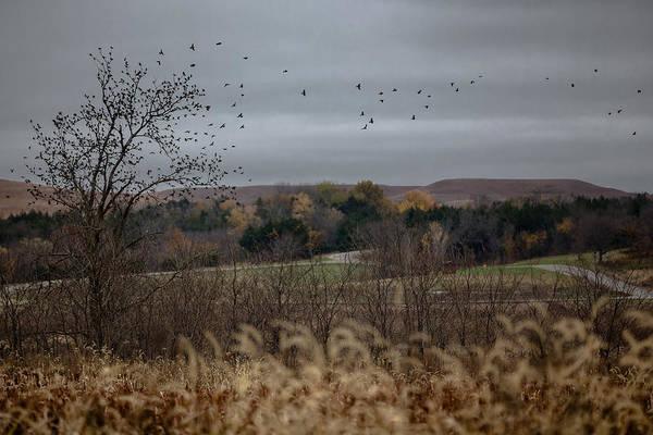Photograph - Take Flight by Ryan Heffron