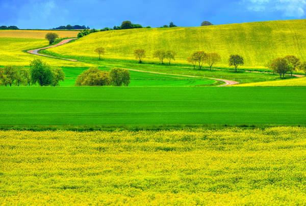 Burgundy Photograph - Take Me Home Country Road by Midori Chan