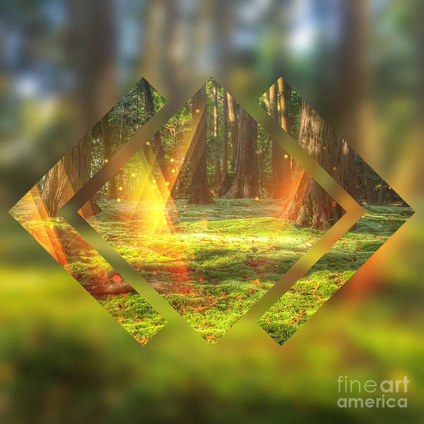 Digital Art - Take Me To The Magic Forest by Beverly Claire Kaiya
