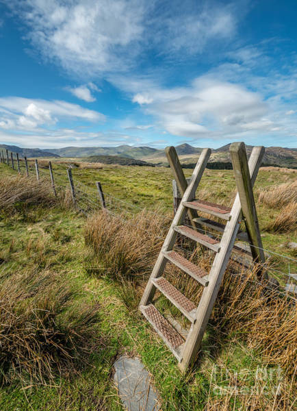 Ladders Photograph - Take The Path by Adrian Evans