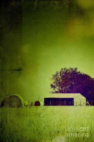 Strange Land Wall Art - Photograph - Taken by Trish Mistric