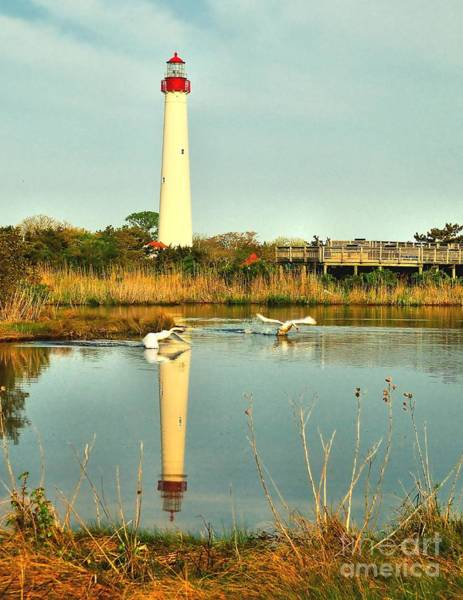 Photograph - Takeoff At Cape May Lighthouse by Nick Zelinsky