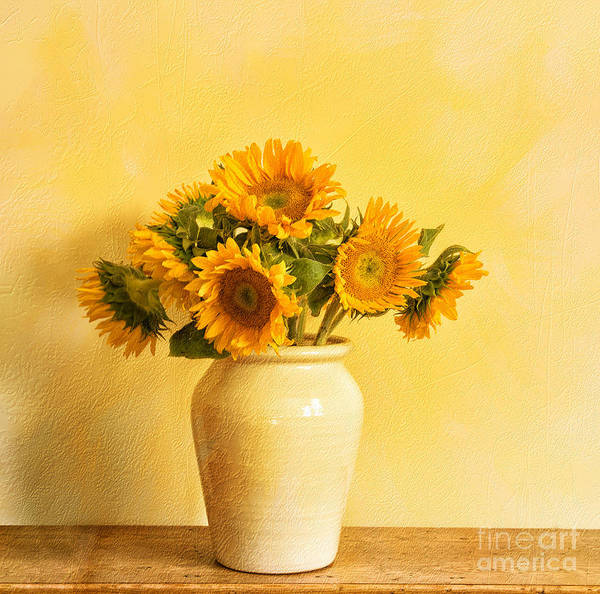 Wall Art - Photograph - Talking To Van Gogh by Terry Rowe
