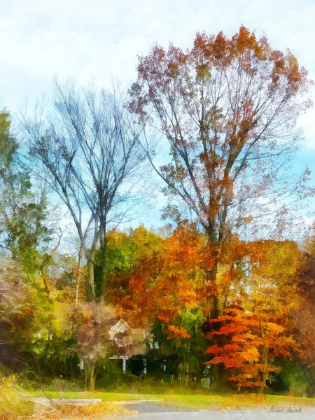 Photograph - Tall Autumn Trees by Susan Savad