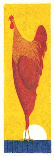 Wall Art - Photograph - Tall Chicken by MGL Meiklejohn Graphics Licensing