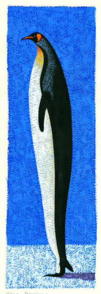 Wall Art - Photograph - Tall Penguin by MGL Meiklejohn Graphics Licensing