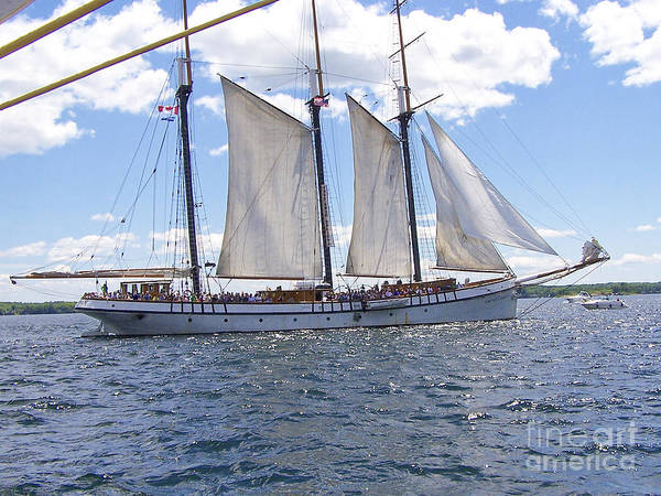 Photograph - Tall Ship 5 by Tom Doud