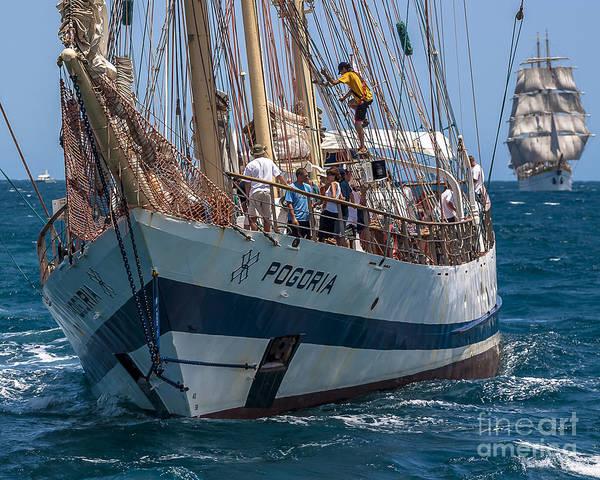 Photograph - Tall Ship Pogoria by Pablo Avanzini
