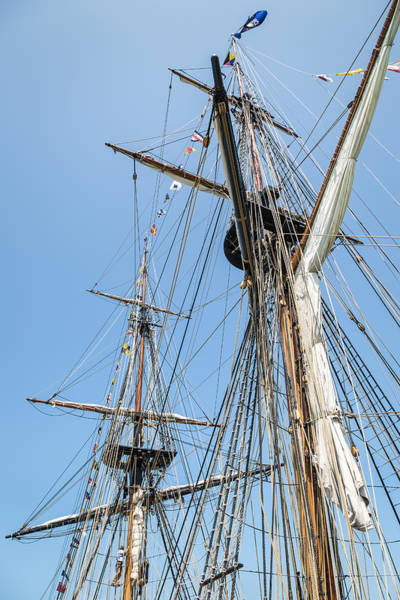 Photograph - Tall Ship Rigging by Dale Kincaid