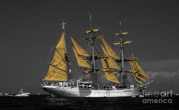 Sailing Terms Photograph - Tall Ship by Skip Willits