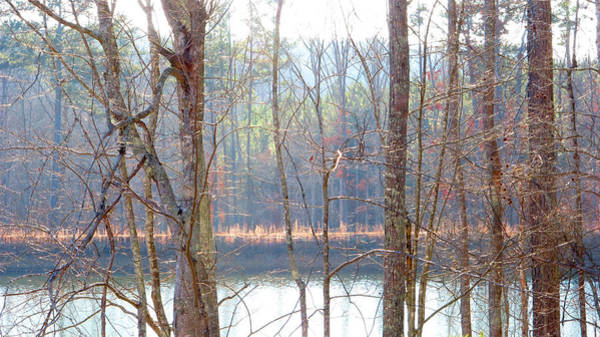 Photograph - Tallapoosa by Keith May