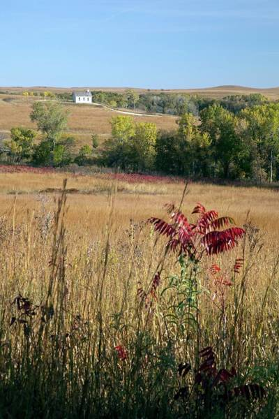 Nature Conservancy Photograph - Tallgrass Prairie by Jim West