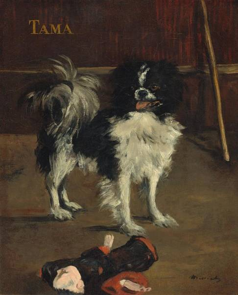 Wall Art - Painting - Tama - The Japanese Dog by Edouard Manet