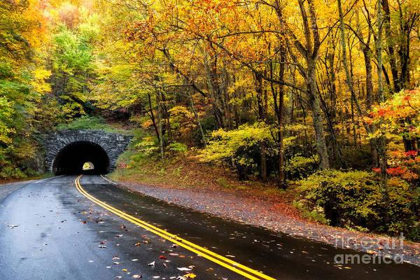 Photograph - Tanbark Ridge Tunnel by Deborah Scannell