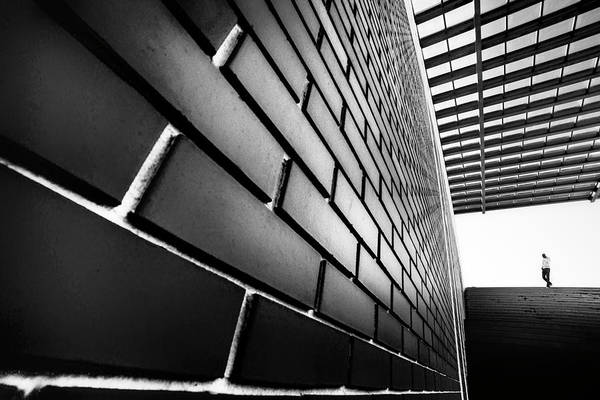 Bricks Photograph - Tangles by Paulo Abrantes