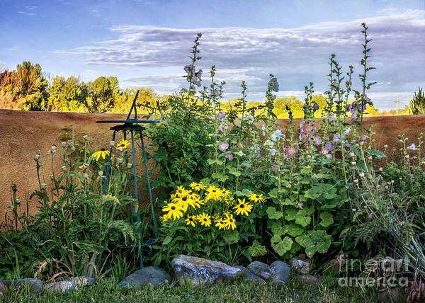 Photograph - Taos Garden  by Terry Rowe
