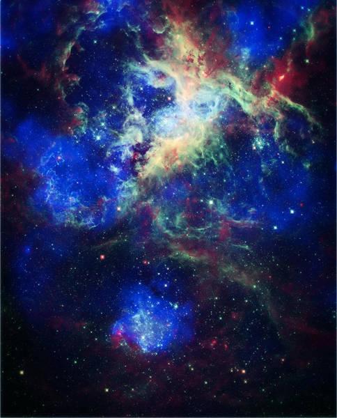 Wall Art - Photograph - Tarantula Nebula 5 by Jennifer Rondinelli Reilly - Fine Art Photography