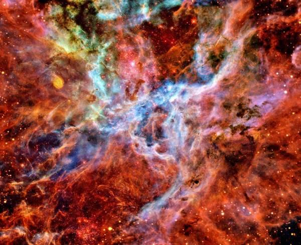 Wall Art - Photograph - Tarantula Nebula by Benjamin Yeager