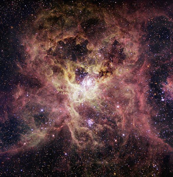 Wall Art - Photograph - Tarantula Nebula by Robert Gendler/science Photo Library