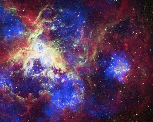 Infrared Radiation Photograph - Tarantula Nebula by X-ray: Nasa/cxc/psu/l.townsley Et Al.; Optical: Nasa/stsci; Infrared: Nasa/jpl/psu/l.townsley Et Al.