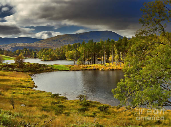 Wall Art - Photograph - Tarn Hows In The Lake District by Louise Heusinkveld