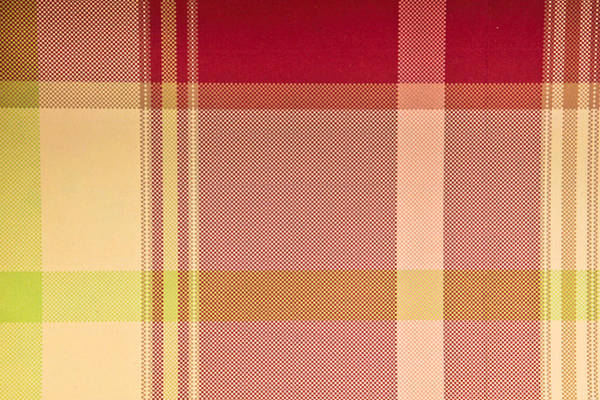 Fall Colors Photograph - Tartan Cloth by Tom Gowanlock