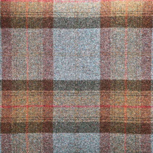 Fuzzy Photograph - Tartan Wool by Tom Gowanlock