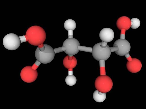 Compound Photograph - Tartaric Acid Molecule by Laguna Design/science Photo Library