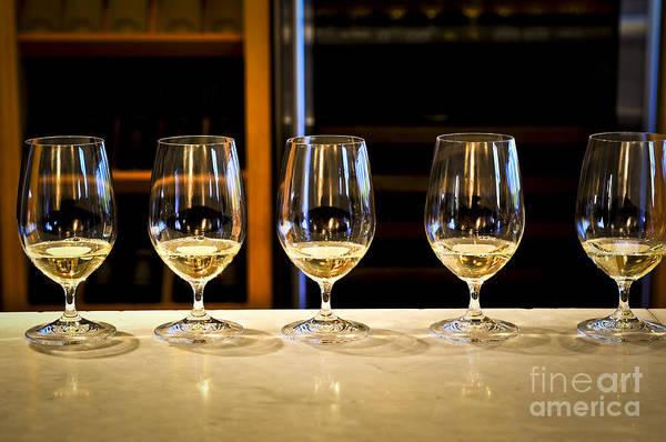 Photograph - Tasting Wine by Elena Elisseeva