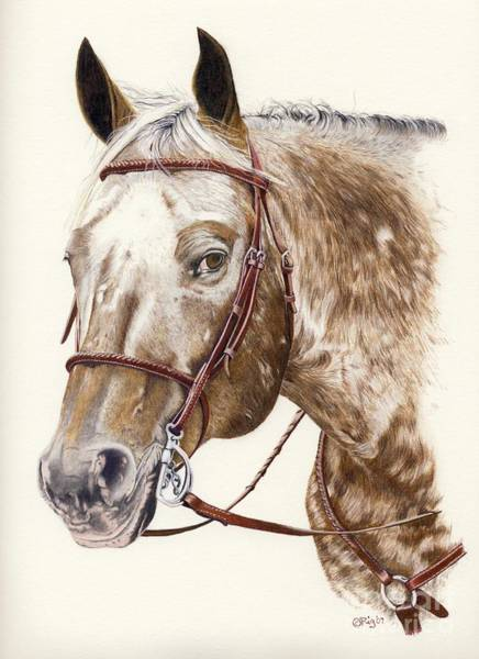 Appaloosa Drawing - Te by Rosellen Westerhoff