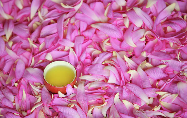 Wall Art - Photograph - Tea With Petals Of Lotus by Vietnam