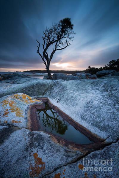 Desolation Photograph - Teardrop by Matteo Colombo