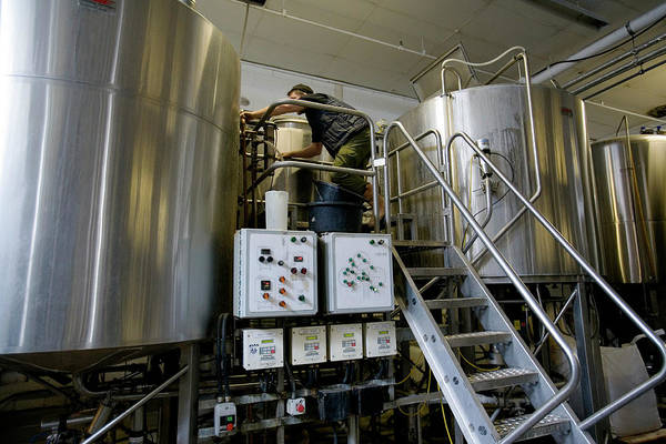 Wall Art - Photograph - Technician Adjusting Vats In Microbrewery by Adam Hart-davis/science Photo Library