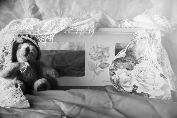 Wall Art - Photograph - Teddy Love by Camille Lopez