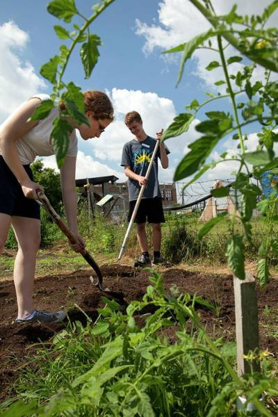 Non Profit Photograph - Teenagers Working In A Garden by Jim West