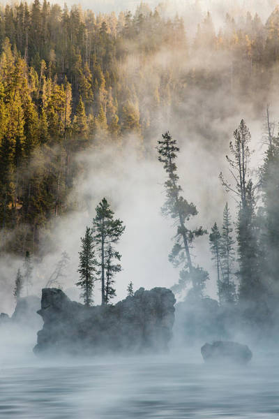 Yellowstone Canyon Photograph - Tees And Boulders In Yellowstone River by Adam Jones