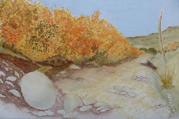 Tejas Creek Experiment - 7 Art Print