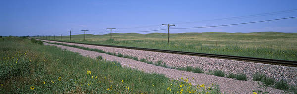 Peacefulness Photograph - Telephone Poles Along A Railroad Track by Panoramic Images