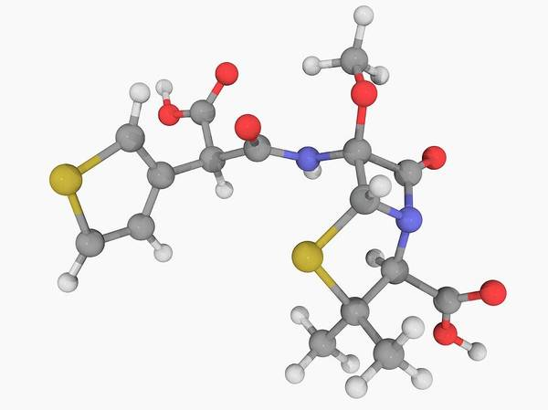 Compound Photograph - Temocillin Drug Molecule by Laguna Design/science Photo Library