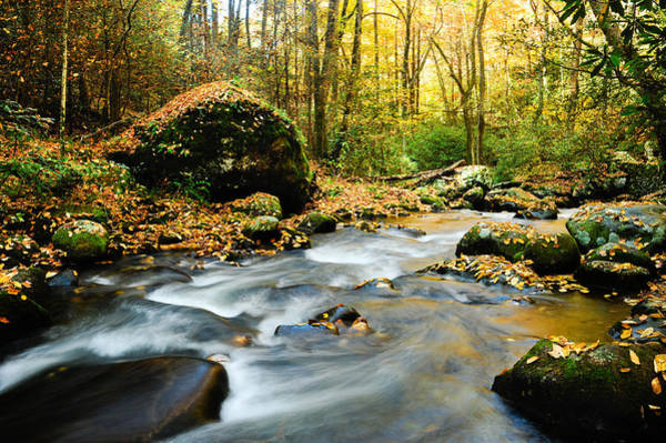 Photograph - Tennessee Stream In Fall by Don and Bonnie Fink
