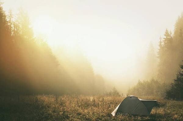 Tent Photograph - Tent Amidst Plants Against Trees In by Szabo Ervin-edward / Eyeem