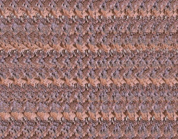 Stereogram Photograph - Tentacles Stereogram by Vijay Sonar