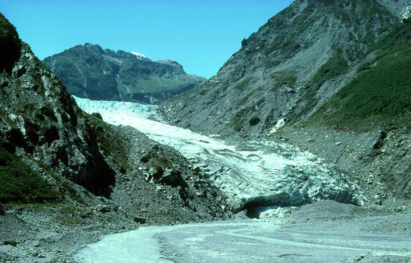 Terminal Photograph - Terminal Face Of Fox Glacier by Angela Murphy/science Photo Library