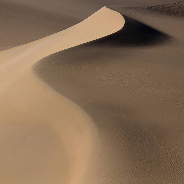 Dunes Photograph - Terra Incognita Xxxiii by Will Nourse